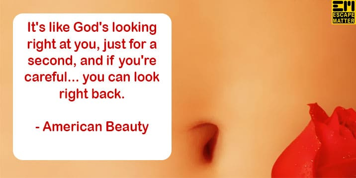American Beauty Movie Quotes